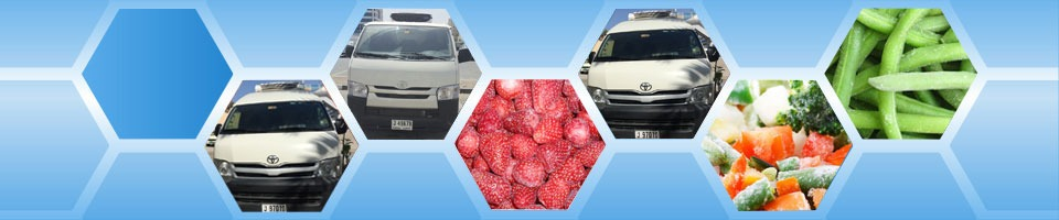 chiller vans dubai rerigerated transport